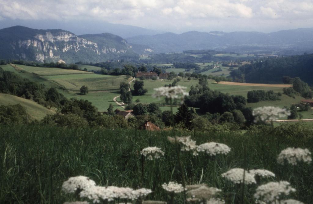 camino-f-landschaft-rhone-small