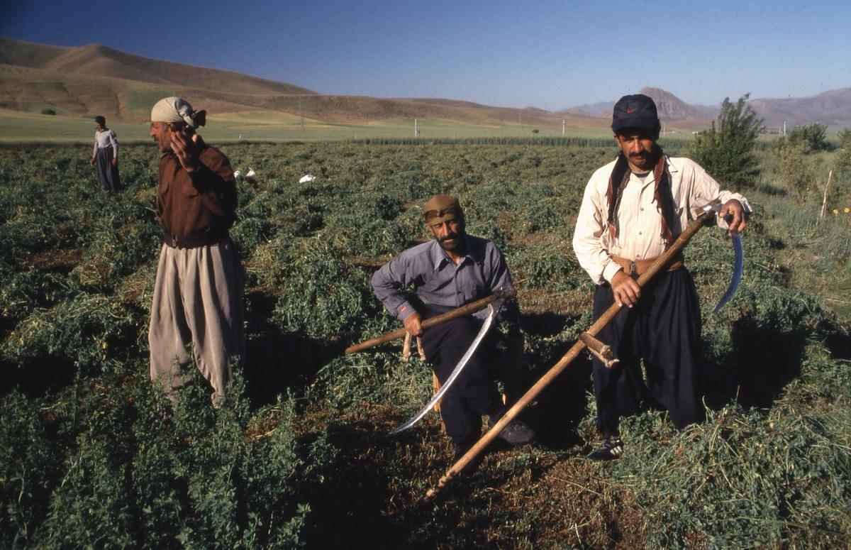 iran-kurdische-bauern-small