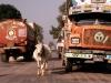 nepal-tata-lastwagen