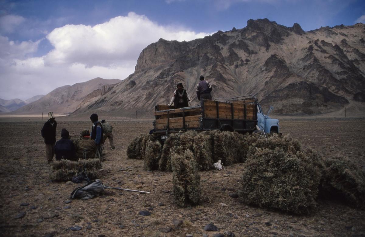 tajikistan-tersken-truck-small